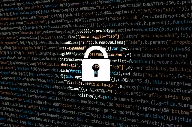 kybernetická bezpečnost