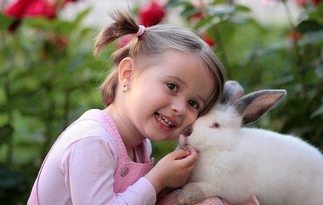 králík s malou holčičkou